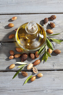 Argan nuts from Argan tree, Argania spinosa, leaves and Argan oil bottle - CSF021281