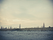 Ruegen, Baltic Sea, Mecklenburg-Vorpommern, Island, winter, Beach, sea - MJF001035