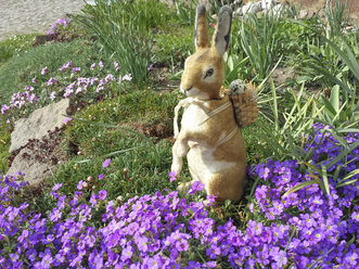 Easter, Easter eggs, Easter, Easter Bunny, Holiday, Tradition, Saxony, Germany, Aubretia - MJF001028