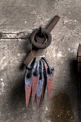 Germany, Bavaria, Josefsthal,  at historic blacksmith's shop - TCF003973