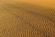 Algeria, Tassili n Ajjer, Sahara, sand ripples on a desert dune - ESF001020
