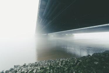 Germany, Hamburg, Freihafenelbbruecke, morning mist - MSF003819