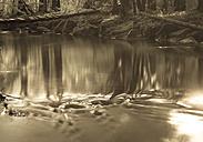 Germany, Munich, River, flowing water - FCF000071