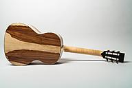 Guitar by Joe Striebel, rear side - TCF003997