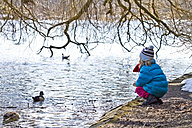 Little girl crouching at waterside of pond - JFEF000328