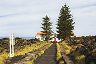 Portugal, Azores, Sao Miguel, Piscina naturale di Ferreira - ON000507