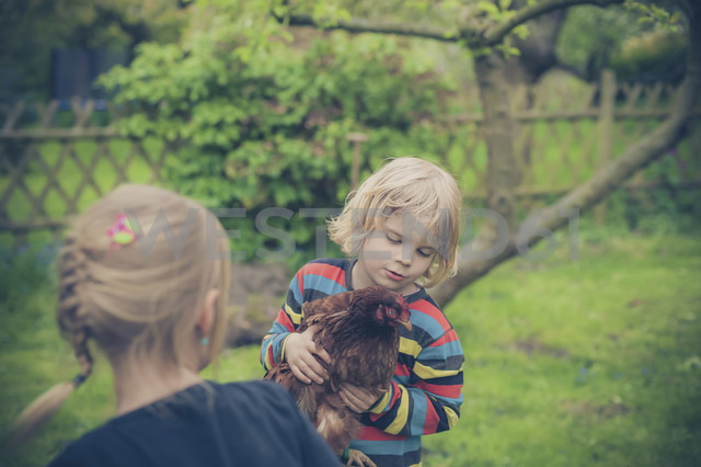 Two childrenl with chicken in the garden - MJF001105