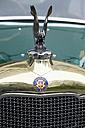 Germany, Hesse, Wiesbaden, Morris Leon Bollee, Radiator grille - BSC000416