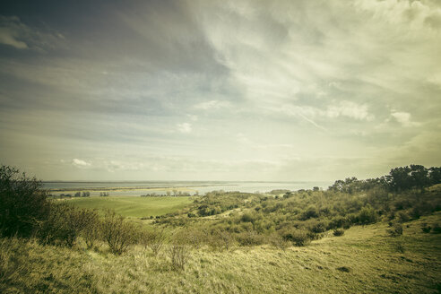Germany, Mecklenburg-Western Pomerania, Hiddensee, view of landscape - CMF000131