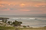 New Zealand, Chatham Island, Ohira Bay at sunset - SHF001204