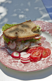 Bread with tomatoes and red radish on plate - AKF000366