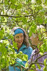 Senior mother and daughter pruning tree - AKF000383