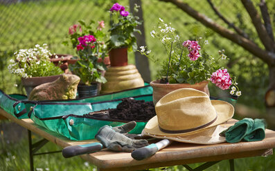 Flowers, hat and gardening tools on table - AKF000379
