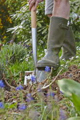 Close-up of woman digging in garden - AKF000368