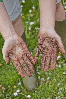 Dirty hands of woman in garden - AKF000377