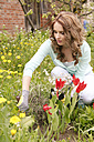 Woman planting in the garden - VTF000217
