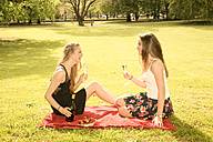 Two young female friends celebrating birthday in park - FCF000166