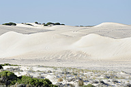 Australia, Western Australia, Lancelin,  view to the white sand dunes - MIZ000473