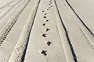 Australia, Western Australia, Lancelin, footprints and tyre tracks in the sand - MIZ000476