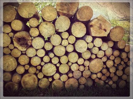 Woodpile, Bavaria, Germany - SARF000579