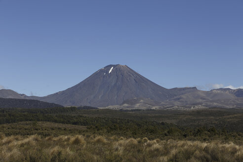 New Zealand, view to Mount Ngauruhoe - STDF000056