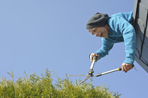 Man trimming hedge from top of roof - HACF000111