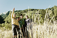 Four boys exploring the nature - HHF004813