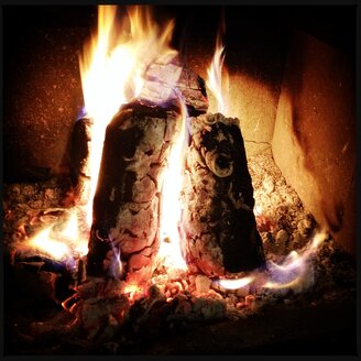 burning, charred logs, standing in the oven - SRSF000469
