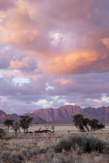 Africa, Namibia, 	Sossusvlei, Landscape with mountains, trees and clouds at sunset - HLF000476
