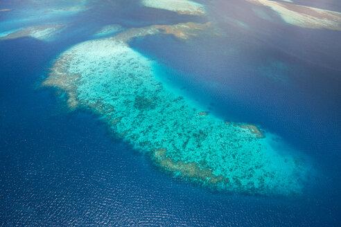 Oceania, Palau, Pacific Ocean, Coral reef - JWAF000046