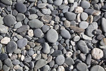 New Zealand, stony beach - GWF002776