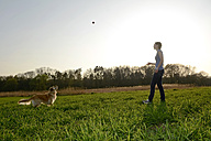 Young woman playing with Golden Retriever on meadow - BFRF000419