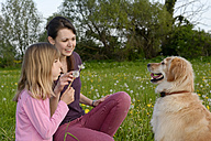 Young woman and little girl sitting with Golden Retriever on meadow - BFRF000435