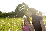 Young woman and little girl blowing blowballs on a meadow - BFRF000441