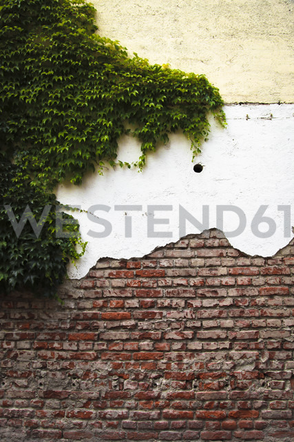 House facade with different layers and facade greenery - FCF000210