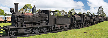Australia, New South Wales, Dorrigo, steam engines at the Steam Railway Museum - SH001291