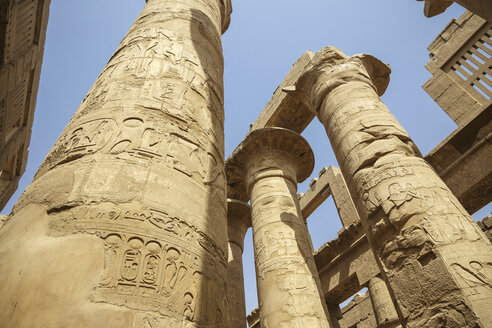 Egypt, Luxor, columns with hieroglyphs of Karnak temple - STDF000102