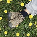 Germany, Eifel, walkers, woman engaged in flower meadow, dandelion (Taraxacum) - GWF002743