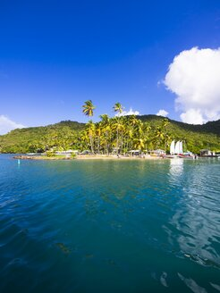 Caribbean, St. Lucia, Sailing yachts in Marigot Bay - AMF002247