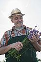 Germany, Hesse, Lampertheim, portrait of senior farmer with chives, Allium schoenoprasum - UUF000536