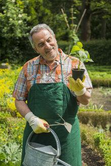 Germany, Hesse, Lampertheim, portrait of happy senior gardener with potted plant - UUF000575