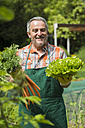 Germany, Hesse, Lampertheim, portrait of happy senior gardener with bunch of carrots and head of lettuce - UUF000579