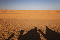 Africa, North Africa, Tunesia, Maghreb, Sahara near Ksar Ghilane, Shadows of a caravan with dromedaries and tourists on sand - GFF000468
