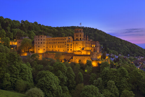 Germany, Heidelberg, Heidelberg Castle - TI000050