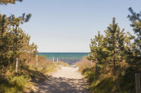 Germany, Mecklenburg-Western Pomerania, Ruegen, Beach path at Schaabe - MJF001214