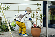 Little boy finding an Easter egg in plant pot - MFF001121