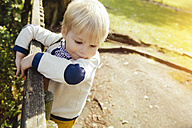 Toddler climbing on a wooden fence - MFF001111