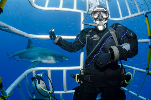 Mexico, Guadalupe, Pacific Ocean, scuba diver in shark cage with white shark, Carcharodon carcharias, in the background - FGF000010