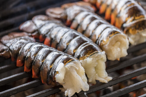 Lobster tails cooking over charcoal on barbecue grill - ABAF001346