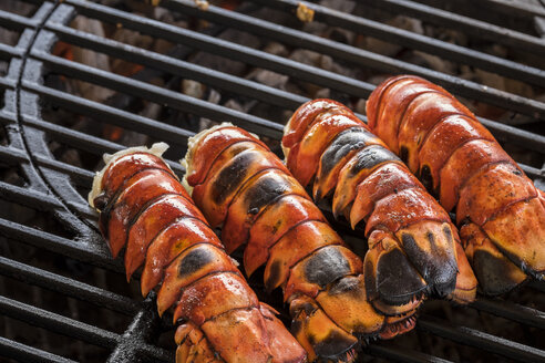Lobster tails cooking over charcoal on barbecue grill - ABAF001348